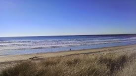 South Beach 223154