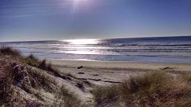 South Beach 223155