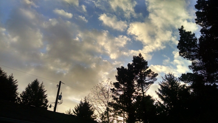 Sky 11914
