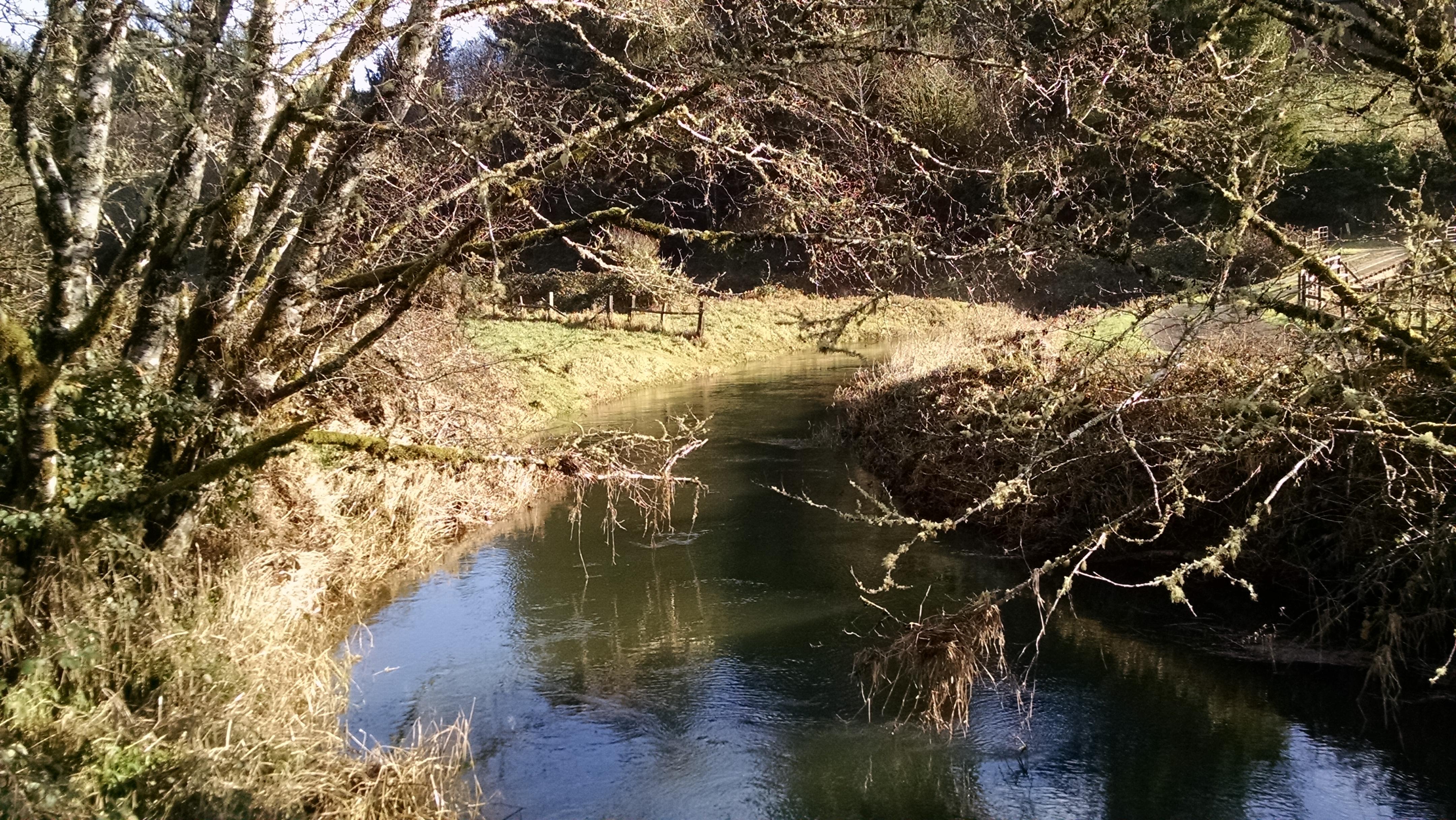 beaver-creek-122116m