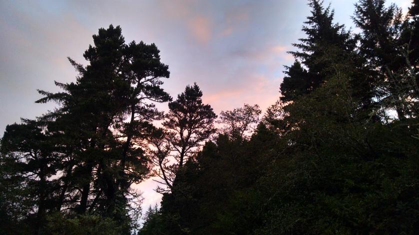 Sunrise_92117[1]