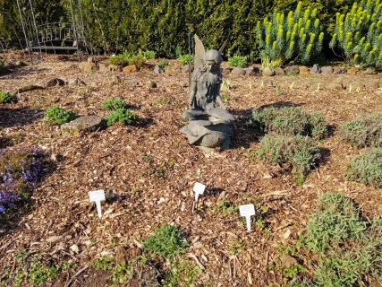 Oregon Garden 3520