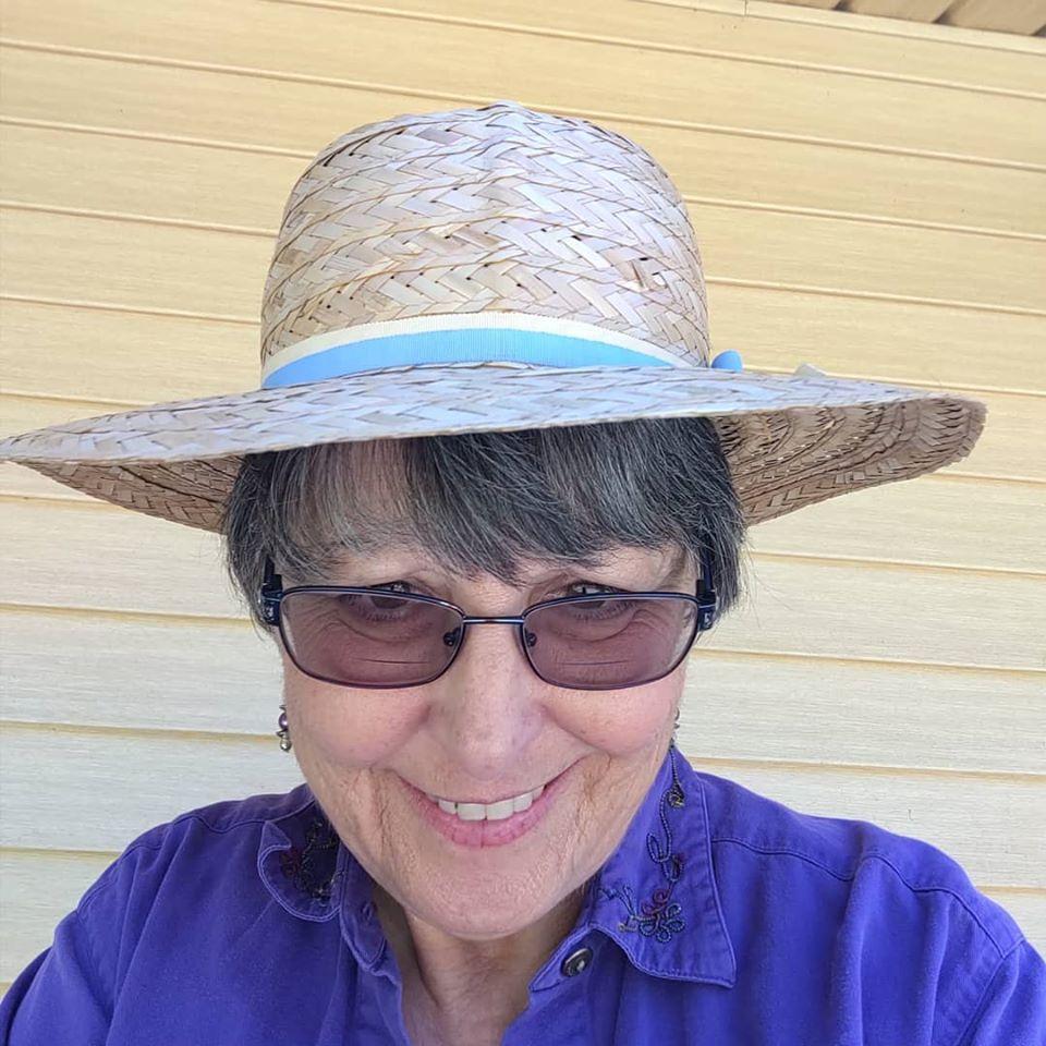 Sue hat #2 41720